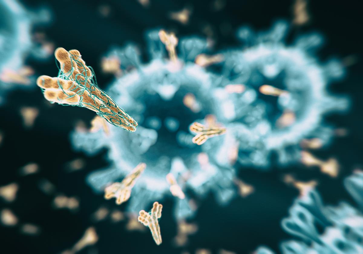 Triumph of Trop-2 in Antibody-Drug Conjugate (ADC) Space
